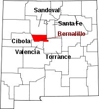 Bernalillo County Public Records
